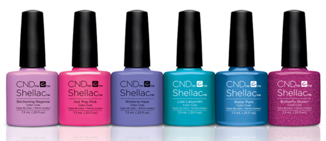 new collection garden-muse-shellac